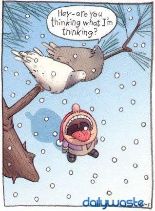 funny-christmas-card-4