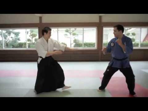 Jujitsu vs. Aikido