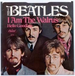THE BEATLES: I am the walrus